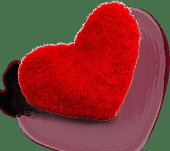 extra_img_heart